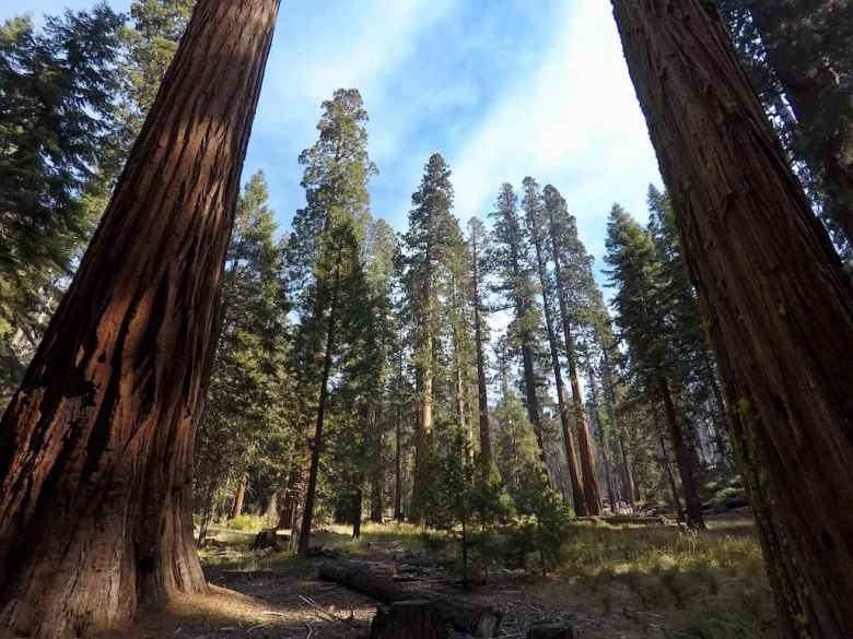 when is the best time to visit yosemite