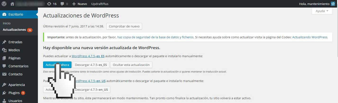 Wordpress update pro Alex Gasol