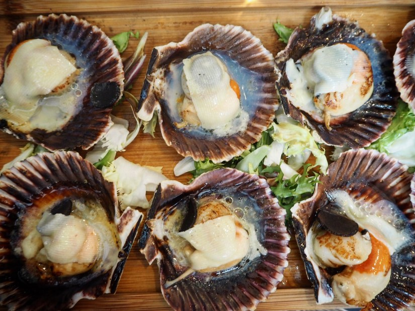 delicious scallops in Spain