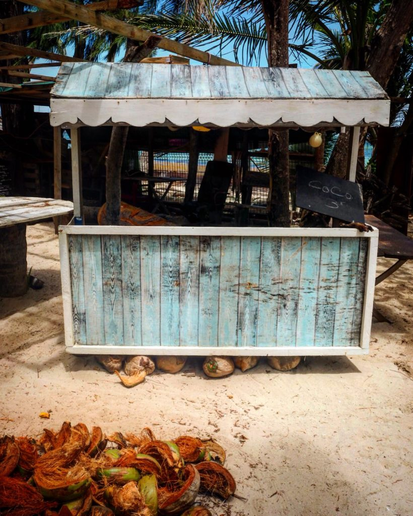 blue coconut stand on the beach