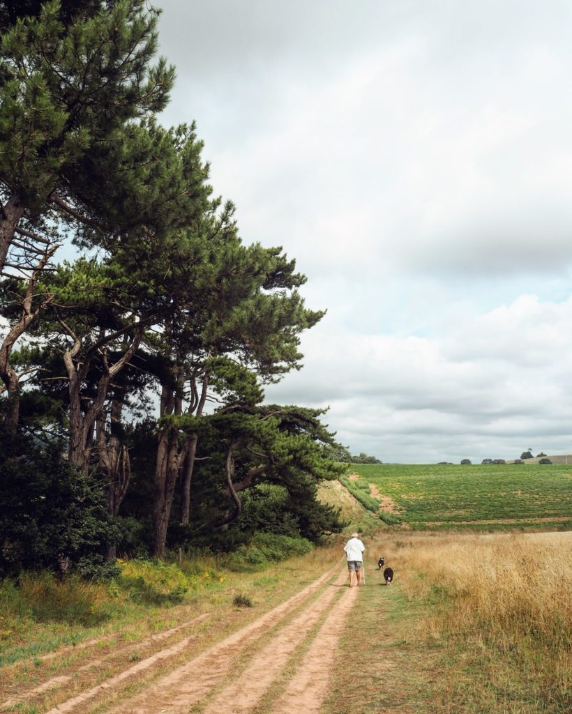 a man walking his dog in the Devon countryside