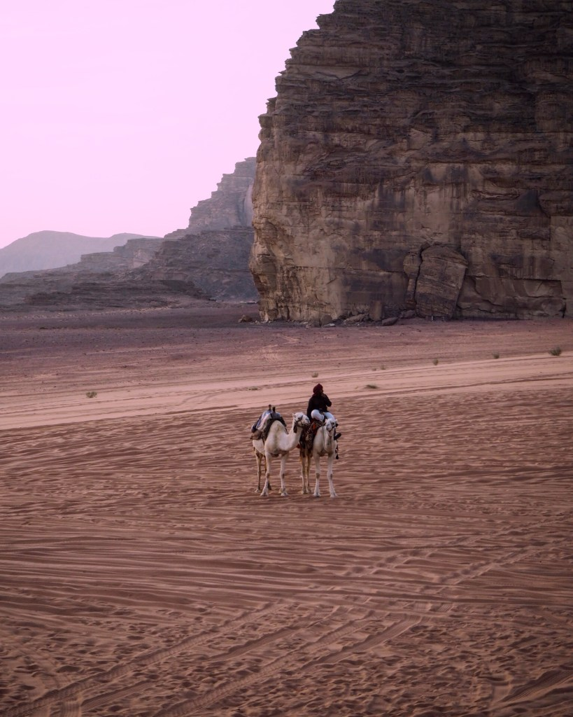 a man on a white camel in Wadi Rum