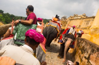 Riding up to the Amer Fort in Jaipur, India. 2016.