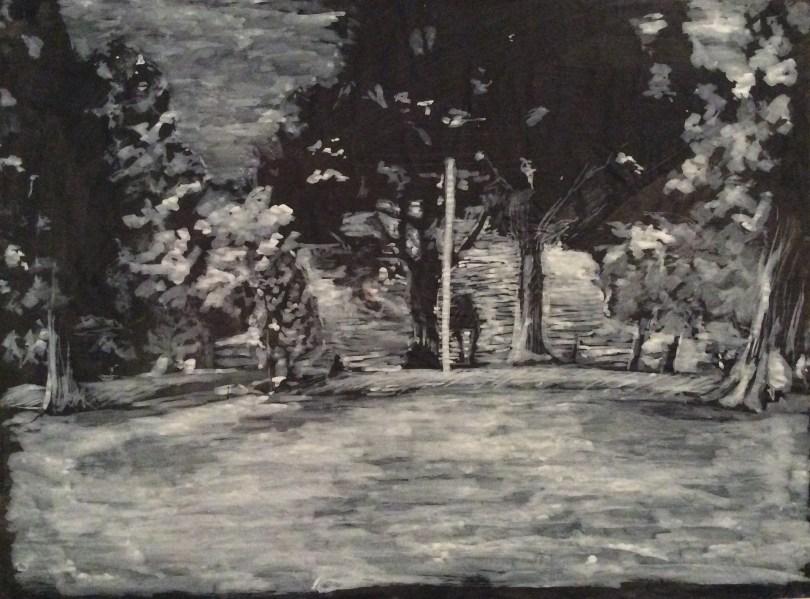 White on black landscape