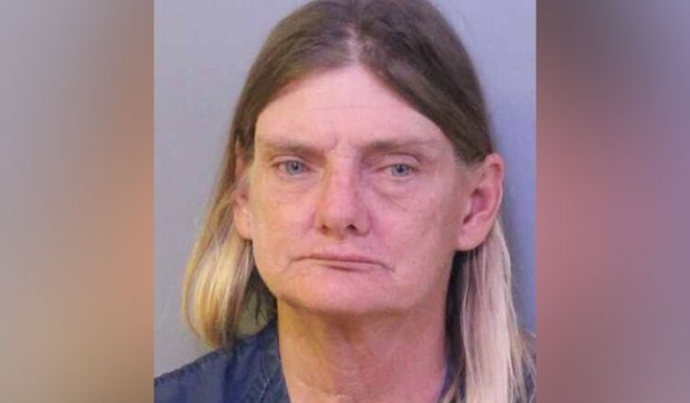 Florida woman arrested for drunk-driving a horse (Photos)