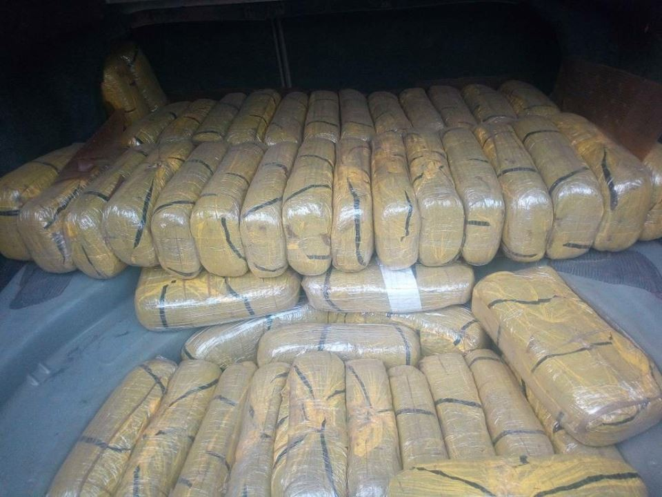 NDLEA arrests three people?56kg of Cannabis in Yobe State
