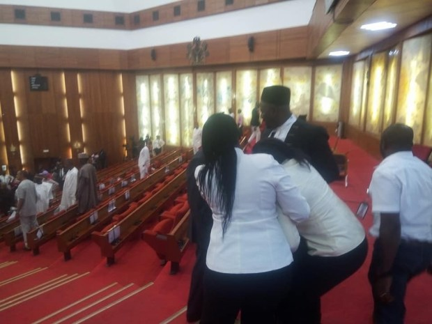 Photos and video of thugs stealing the mace from the Senate