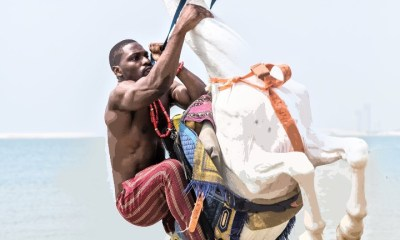 Nigerians accuse Tobi Bakre of animal cruelty after he held a horse's neck too tight during photoshoot