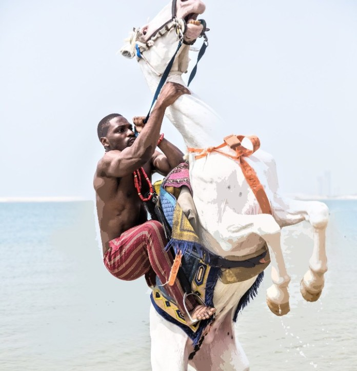 Nigerians accuse Tobi Bakre of animal cruelty after he held a horse