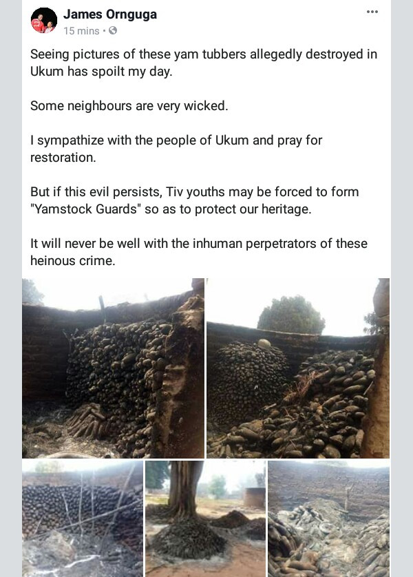 Photos: Unknown persons destroy hundreds of yam tubers in Benue