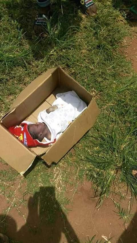 Photos: Body of a child found dumped beside an Anglican church in Anambra