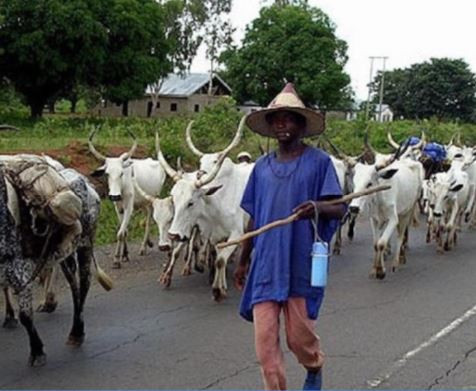 FG opens radio station to reach herdsmen across the country