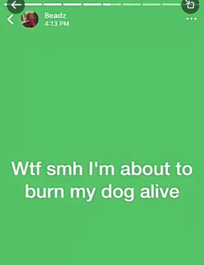 Graphic Photos: Nigerian Boy Burns His Pet Alive For the Fun of it and Filmed it