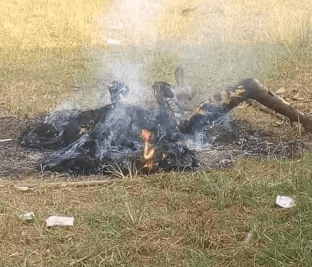 Man burnt to death after he killed 9 people, 7 of whom are his family members (graphic photos)