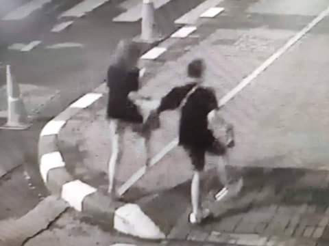 Russian tourists arrested, fined in Thailand for having sex on the beach in broad daylight (photos)