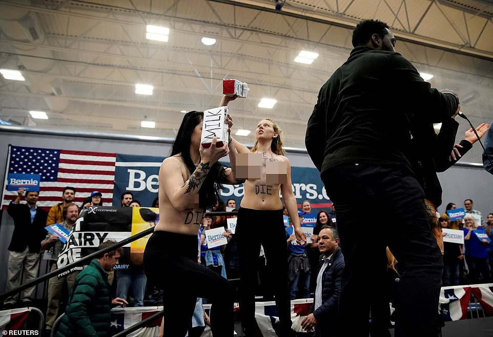 Topless animal rights protesters confront Bernie Sanders at campaign rally demanding he drops his support for dairy farmers (photos)