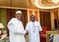 Insurgency: Buhari is still popular and accepted in Borno - Femi Adesina