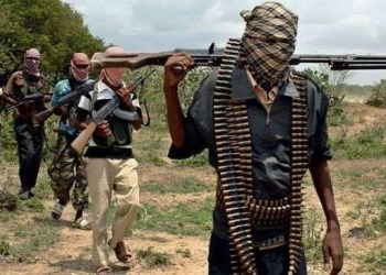 9 killed in Kaduna village in fresh attack