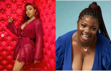The real runs girl is in the house with Dorathy – Toyin Lawani reacts to photo of BBNaija housemate allegedly found on escort service website