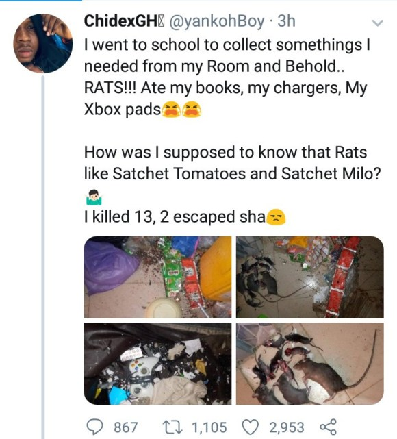 ABSU student returns to school after the lengthy lockdown to discover the damage rats have done to his belongings