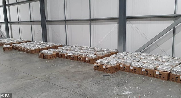 Cocaine worth up to ?100 million found hidden within fruit shipments at Dover port  (photos)