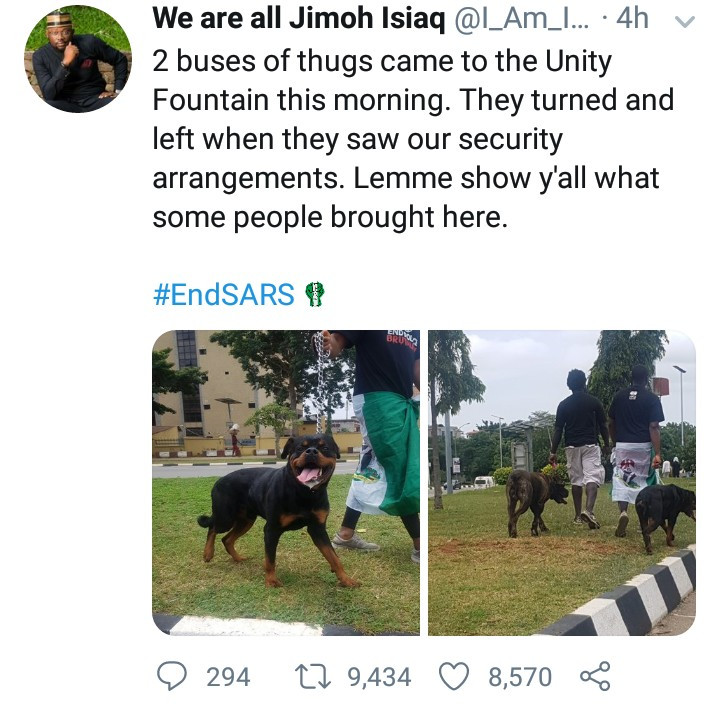 Thugs allegedly back down after Abuja #EndSARS protesters brought fierce dogs to protect them