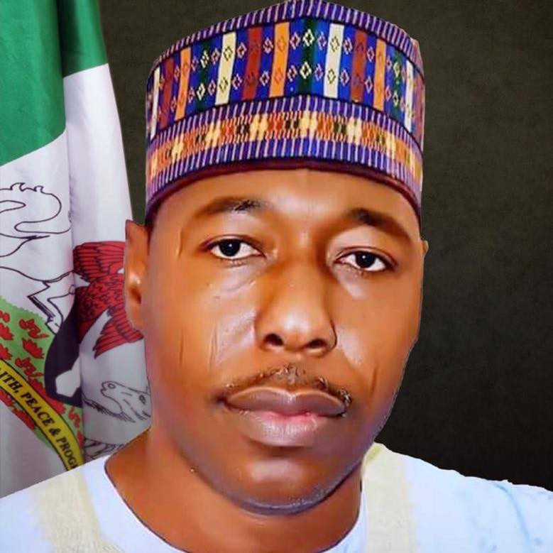 Borno Governor hails UAE conviction of 6 Nigerians over Boko Haram funding, urges FG to use