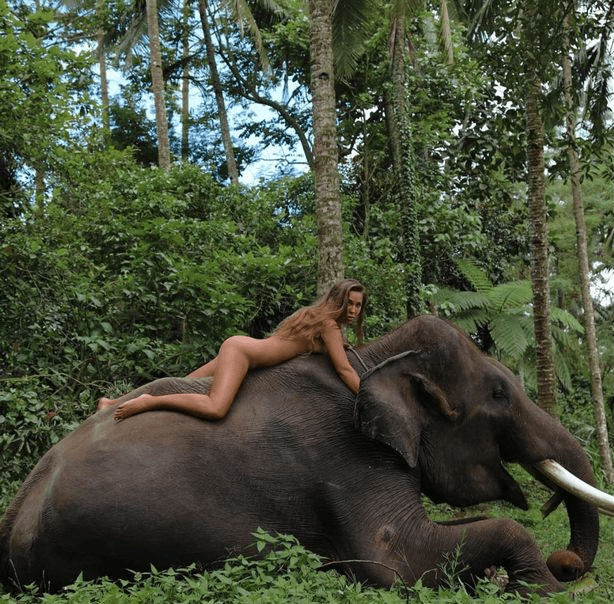 Model slammed for posing naked on top of an elephant