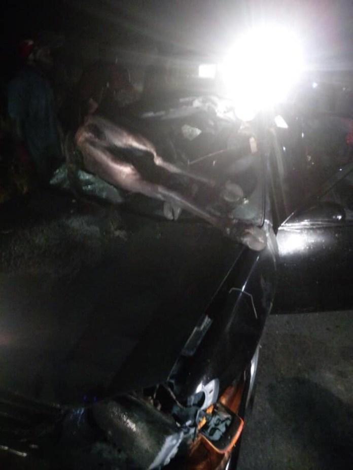 Cow crashes into car in Delta lindaikejisblog 1