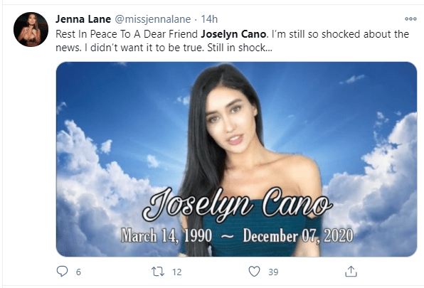 Instagram model, Joselyn Cano dubbed the Mexican Kim Kardashian ?dies aged 29 after a botched butt-lift surgery