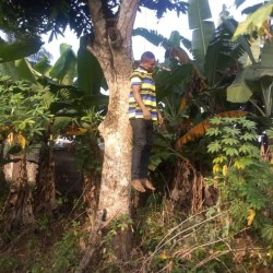 Man in Imo commits suicide by hanging (graphic)