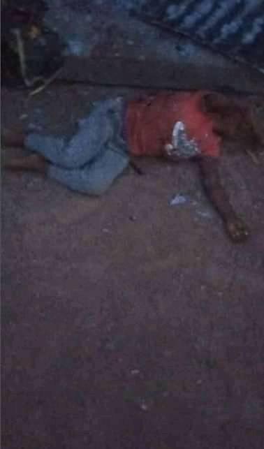 Gunmen kill mother and child in Benue