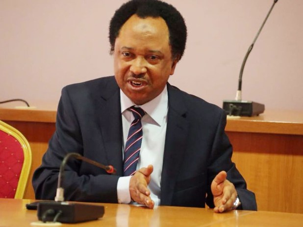 Insecurity: It?s not advisable to travel in vehicles carrying the inscription of a church or mosque - Shehu Sani
