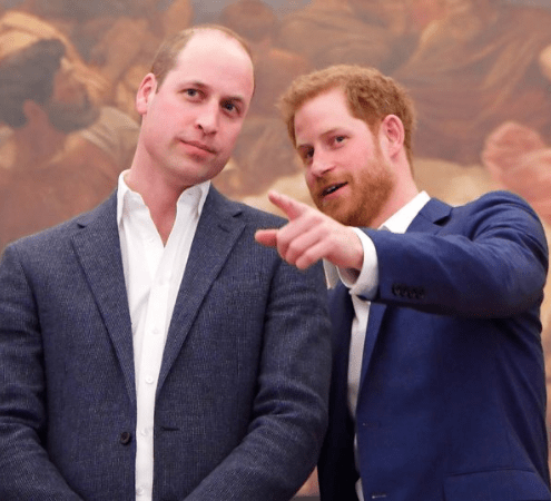 Prince Harry and Prince William have been