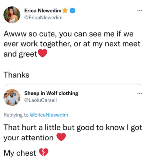 Erica Nlewedim blows off an admirer after he wrote a heartfelt message to shoot his shot