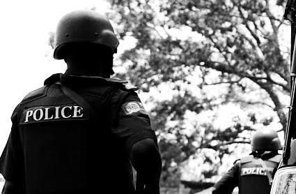 Police arrest 12 illicit drug dealers in Delta, recover cocaine, Indian hemp, cracks