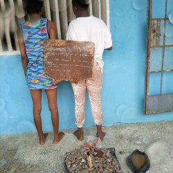 Two women nabbed with 390 wraps of Indian hemp in Delta