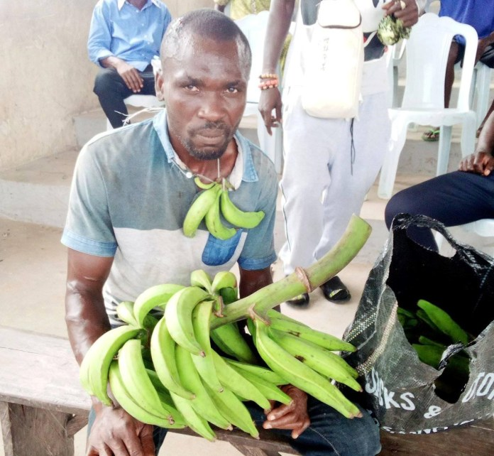 Man gets strokes of cane for stealing plantain in Bayelsa