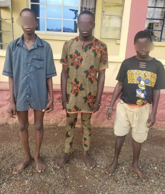 Teenagers arrested for alleged robbery and murder in Ogun state (photo)