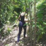 hiking travel jamaica nature alexis chateau