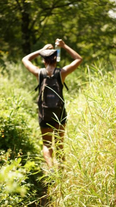Hiking Trail - Alexis Chateau