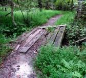 arabia mountain atlanta path trail hiking travel