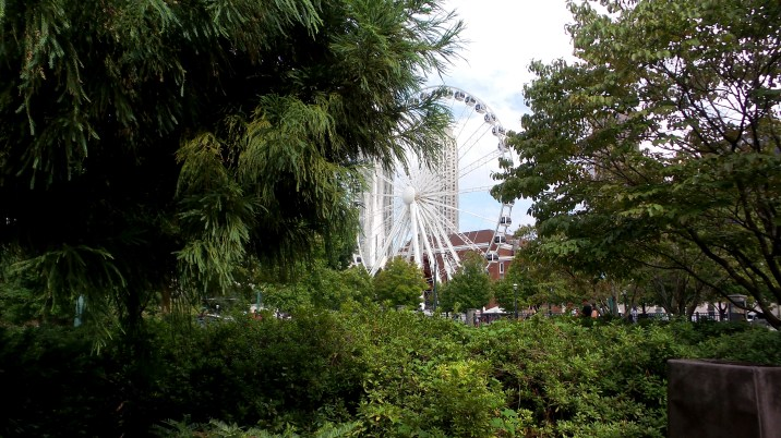Ferris Wheel Bushes atlanta travel