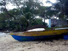 Boat on Boston Bay Shore - Jamaica