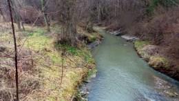 river travel nature