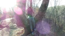 sitting in a tree twilight jamaican traveler