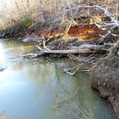 landscape waterscape travel nature