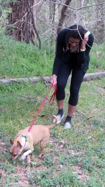animal rescue pet dog hiking trail alexis chateau
