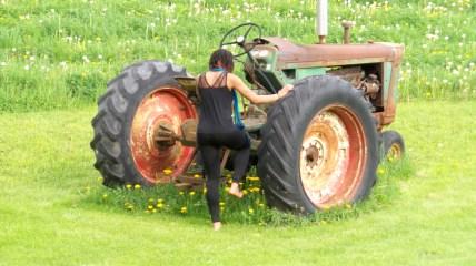 alexis chateau parrott farm green grass nature