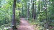 atlanta georgia stone mountain hiking trail